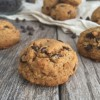 Chocolate Chip Cookies (grain, gluten & nut free)